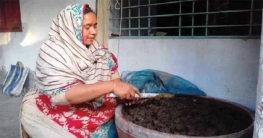 মান্দায় কেঁচো সারে স্বাবলম্বী কামরুন নাহার