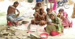 'হাতপাখার গ্রাম' ভালাইন
