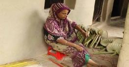 নওগাঁর মহাদেবপুরের ভালাইন এখন 'পাখা গ্রাম'