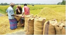 ৪০ টাকায় সেদ্ধ, ৩৯ টাকায় আতপ চাল কিনবে সরকার : খাদ্যমন্ত্রী