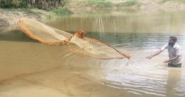 ধামইরহাটে খালের পানিতে চাষাবাদ হচ্ছে রবি শস্য বিভিন্ন ফসল