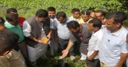 নওগাঁয় বজ্রপাত প্রতিরোধে ১লাখ তালবীজ বপনের উদ্বোধন