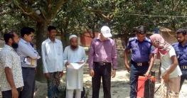 আত্রাইয়ে আমবাগানে ভ্রাম্যমান আদালতের অভিযান