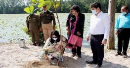 ধামইরহাটে আলতাদিঘী জাতীয় উদ্যানে বিরল প্রজাতির বৃক্ষরোপন